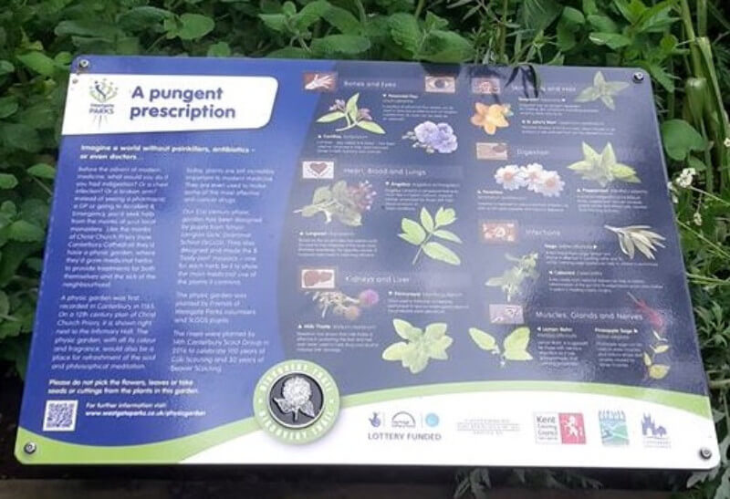 Interpretation panel physic garden